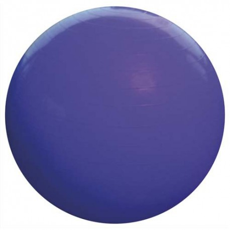 Ballon d'exercice type pilate diamètre 55 cm en PVC regonflable