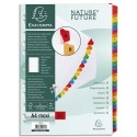 EXACOMPTA Jeu d'intercalaire numérique 31 positions en carte blanche 170g, onglets Mylar®. Format A4+.