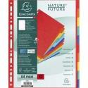 EXACOMPTA Jeu d'intercalaires 10 positions maxi format pour pochettes, en carte lustrée 5/10e, 400g