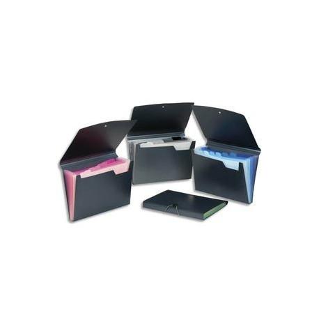 VIQUEL Trieur ménager GRAFICOLOR en polypropylène 7/10e, 8 compartiments. Noir intérieur couleur.
