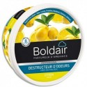 BOLDAIR Pot 300g Gel destructeur d'odeurs citron