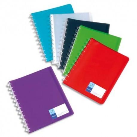 Porte vues VIQUEL - Protège-documents MAXI GEODE en polypro translucide 7/10. 60 vues, 30 pochettes.