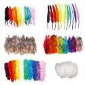 SODERTEX Pack éco Plumes 1000 pièces : faisan, dinde, indien, oies - Tailles et coloris assortis