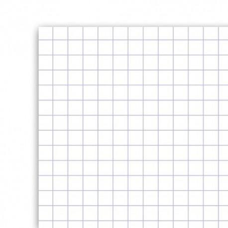 Cahier 21x29.7 (A4) 40 pages Seyès+40 pages unies travaux pratiques piqure Couverture carte